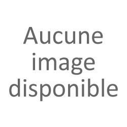 CHARIOT OU DIABLE - n° L110-0080